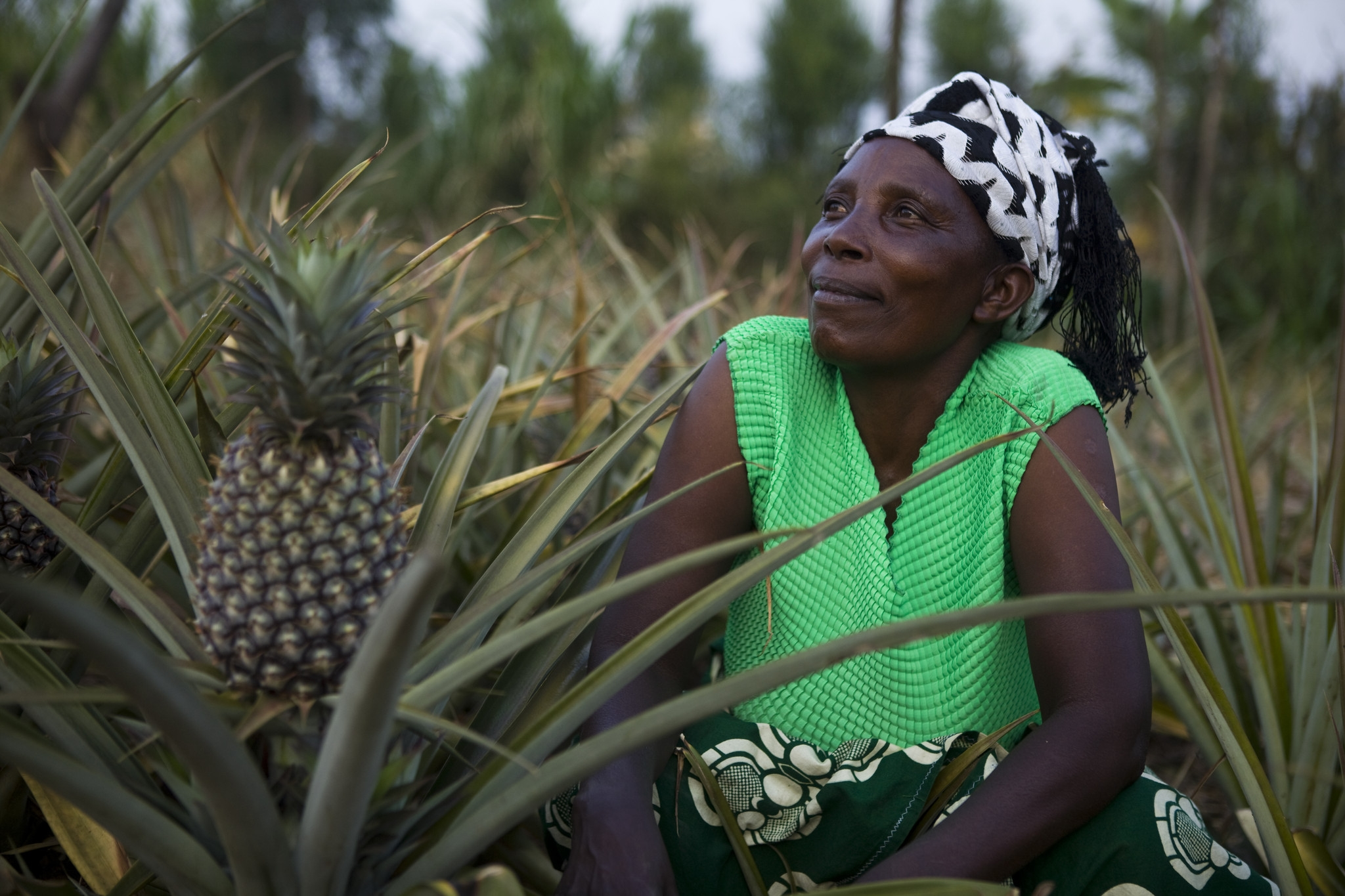 Godelive Nyirabakobua in her pineapple field