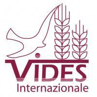 Vides-Logo-nuevo_12.jpeg