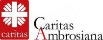logo-caritas-150-pixel-cmyk2.jpeg